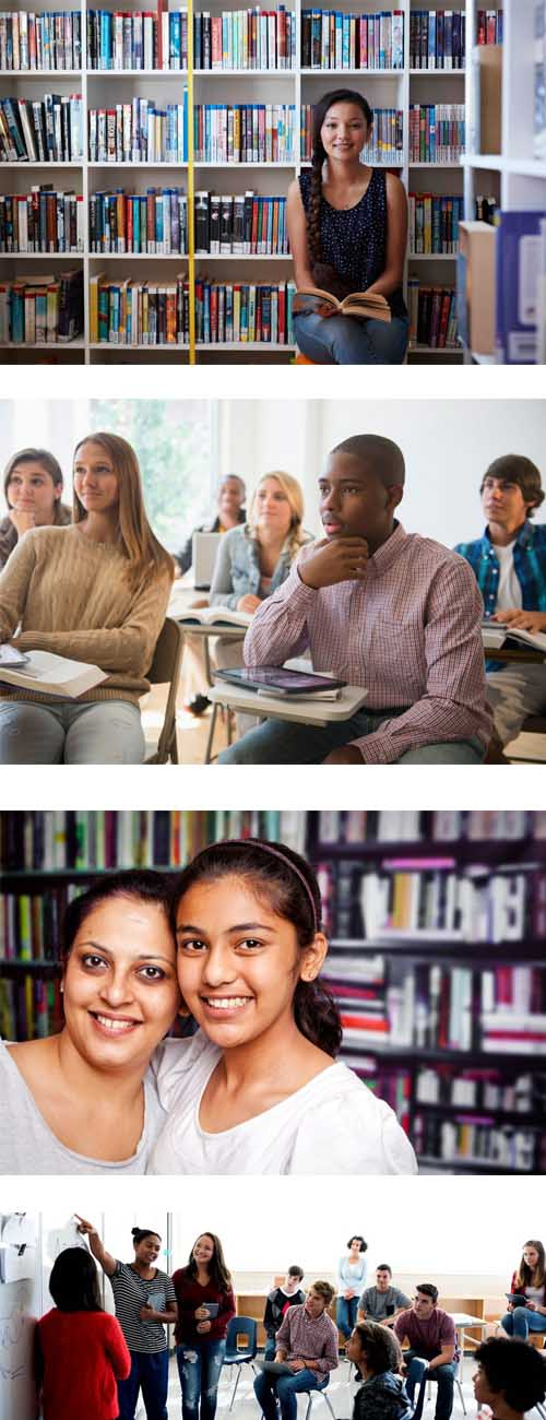 Social Emotional Learning Curriculum